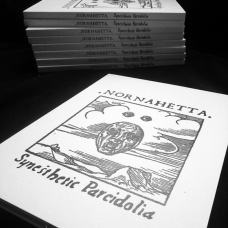 "Nornahetta (Ice) ""Synesthetic Pareidolia"" CD, A5 Digipak"