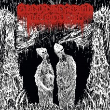 "Bloodsoaked Necrovoid (Cri) ""The Apocryphal Paths Of The Ancient 8th Vitriolic Transcendence"" LP"